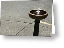 Portland Drinking Water Fountain Greeting Card