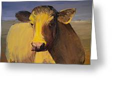 Portrait Of A Cow Greeting Card