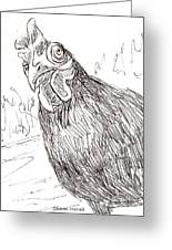 Portrait Of A Little Black Chicken Greeting Card