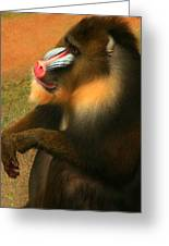 Portrait Of A Primate  Greeting Card