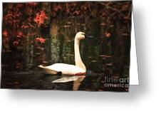 Portrait Of A Swan Greeting Card