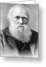 Portrait Of Charles Darwin Greeting Card
