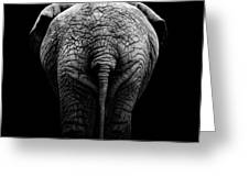 Portrait Of Elephant In Black And White II Greeting Card