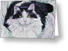 Portrait Of Pj Greeting Card
