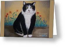 Portrait Of Teddy The Ninja Cat Greeting Card