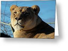 Portrait Of The Mighty Queen Greeting Card