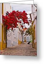 Portuguese Back Street Greeting Card