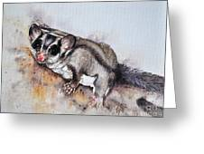 Possum Cute Sugar Glider Greeting Card