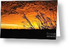 Post Hurricane Rita Clouds At Dockside In Beaumont Texas Usa Greeting Card