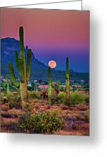 Postcard Perfect Arizona Greeting Card