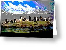Posterized Penguins Line Dance Greeting Card