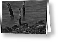 Posts In The Water Greeting Card