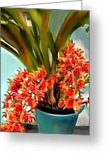 Pot Of Rust Orange Orchids Greeting Card