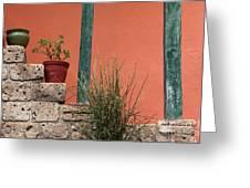 Pot Plants Greeting Card