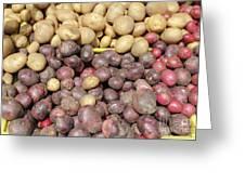 Potato Variety Display Greeting Card