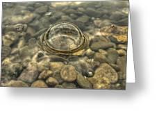 Potomac River Bubble Greeting Card