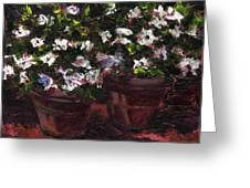 Pots Of Flowers Greeting Card