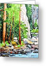 Poudre Canyon Beauty Greeting Card