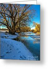 Poudre River Ice Greeting Card by Baywest Imaging