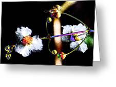 Powder Flower Greeting Card