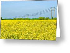 Power Lines In Innsworth Greeting Card