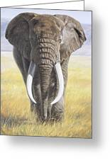 Power Of Nature Greeting Card