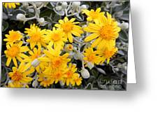 Power Of Yellow Greeting Card