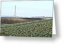 Powerlines And Plowed Fields Greeting Card
