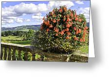 Powis Castle Terrace Greeting Card