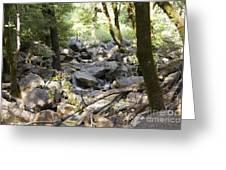 pr 135 - A Very Dry Stream  Greeting Card