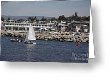 pr 193 - The Sailboat Greeting Card