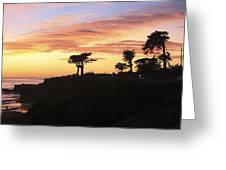 pr 238 - Trees at Sunset Greeting Card
