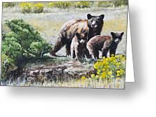 Prairie Black Bears Greeting Card by Aaron Spong