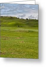 Prairie Dog Town Greeting Card