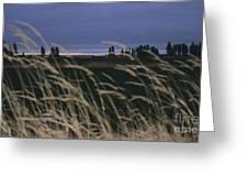 Prairie Morning Greeting Card
