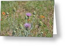 Prairie Portrait Greeting Card