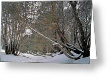 Prairie Winter 2 Greeting Card