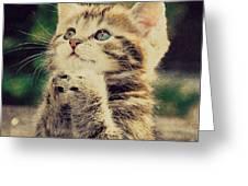Praying Cat Greeting Card