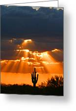 Pre Sunset Sky With Saguaro Greeting Card