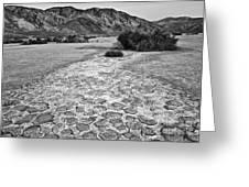 Prehistoric - Clark Dry Lake Located In Anza Borrego Desert State Park In California. Greeting Card