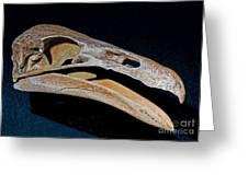 Prehistoric Condor Gymnogyps Kofordi Greeting Card