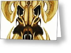Prehistoric Ram Greeting Card