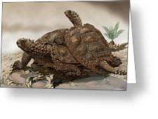 Prehistoric Turtles Greeting Card