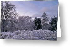 Prettiest Snow Of The Season Greeting Card