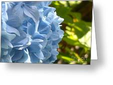 Pretty Blue Flower Greeting Card