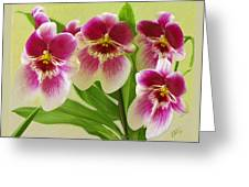 Pretty Faces - Orchid Greeting Card