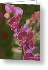 Pretty In Pink Water Color Effect Greeting Card