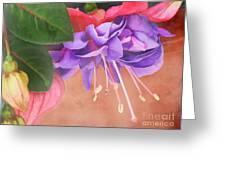 Pretty Little Fuchsia Greeting Card