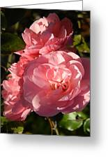 Pretty Pink Bunch Of Roses Greeting Card