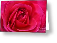Pretty Pink Greeting Card